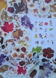 Naklejki vintage listki i rośliny